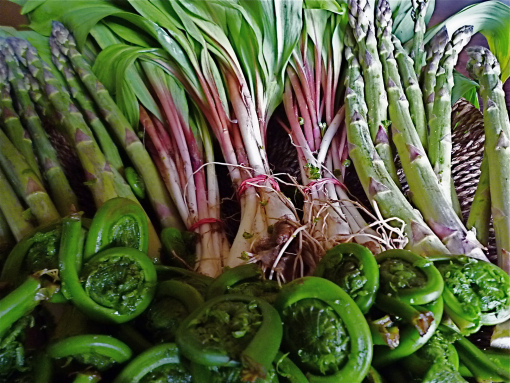 wild-ramps-and-spring-veggies